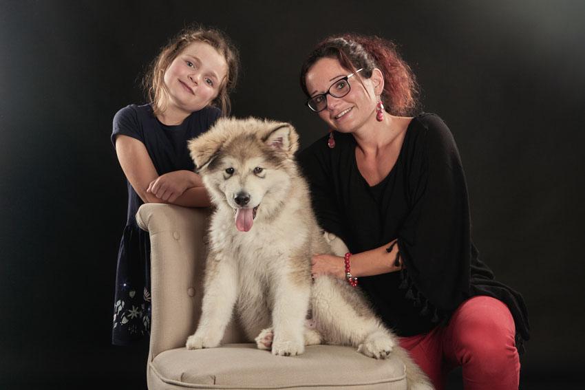 Portrait famille animaux